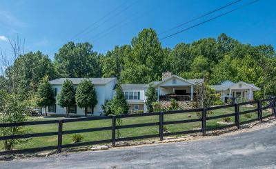 Lawrenceburg Single Family Home For Sale: 1381 Birdie Road