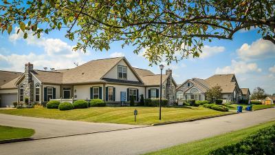 Danville KY Condo/Townhouse For Sale: $240,000