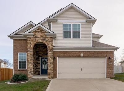 Lexington Single Family Home For Sale: 1040 Haddrell Point