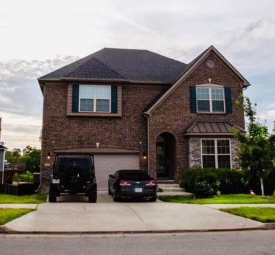 Georgetown Single Family Home For Sale: 160 McIntosh Park