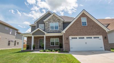 Single Family Home For Sale: 3565 Polo Club Blvd