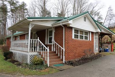 Single Family Home For Sale: 658 Mitchell Creek Road