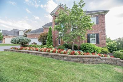 Lexington Single Family Home For Sale: 582 Gingermill