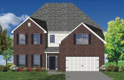 Georgetown Single Family Home For Sale: 458 General John Payne Boulevard