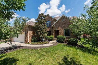 Lexington Single Family Home For Sale: 929 Star Gaze Drive