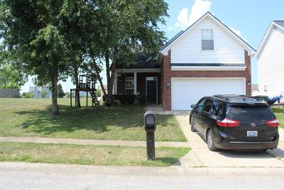 Georgetown Single Family Home For Sale: 131 Valdez Circle