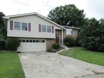 Single Family Home For Sale: 2012 Clemens Court