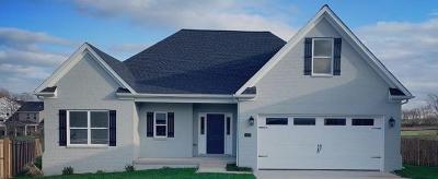 Lexington Single Family Home For Sale: 1975 Covington