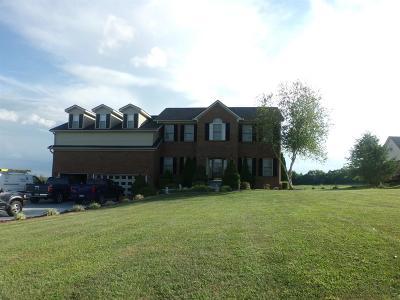 Georgetown Single Family Home For Sale: 138 Coal Ridge Lane