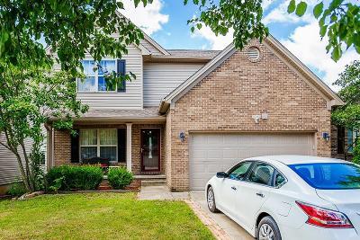 Lexington Single Family Home For Sale: 919 Winding Oak Trail