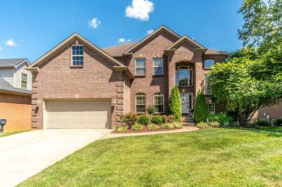Lexington Single Family Home For Sale: 3709 Ridgeview Way