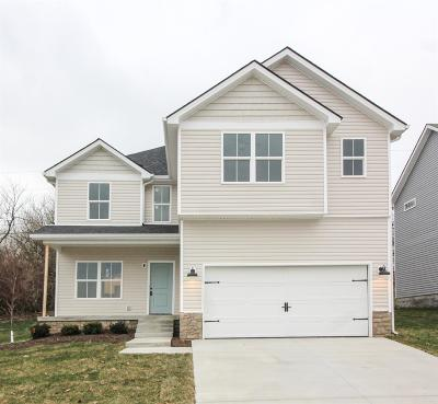 Nicholasville Single Family Home For Sale: 1180 Orchard Drive