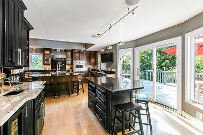 Georgetown Single Family Home For Sale: 103 Whistler Court