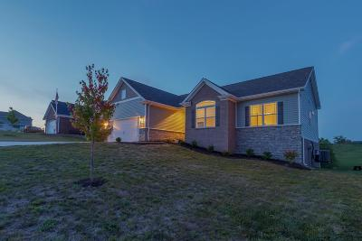 Frankfort Single Family Home For Sale: 116 Whispering Drive