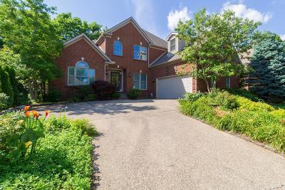 Lexington Single Family Home For Sale: 909 Firethorn Place