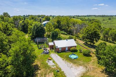 Paris Single Family Home For Sale: 336 Rock Ridge Road