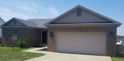 Nicholasville Single Family Home For Sale: 113 Sara Marie Lane