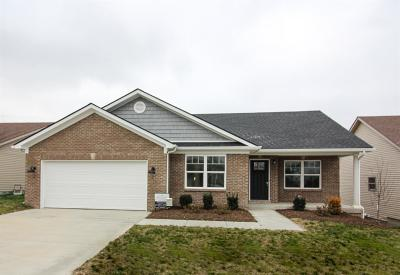 Nicholasville Single Family Home For Sale: 1236 Orchard Drive