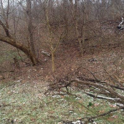 Boone County, Kenton County Residential Lots & Land For Sale: River Road