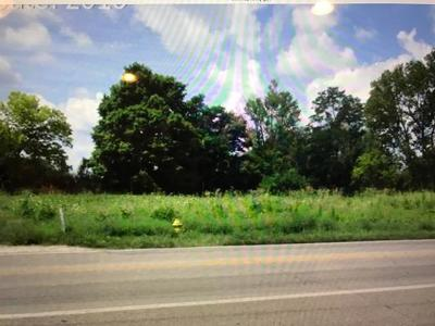 Florence Residential Lots & Land For Sale: 10485 Dixie Hwy