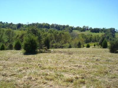 Grant County Residential Lots & Land For Sale: 160 Chippewa Drive