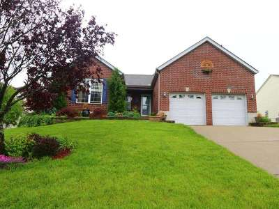 Kenton County Single Family Home For Sale: 6318 Fieldsteade Drive