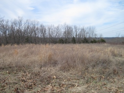 Boone County, Campbell County, Gallatin County, Grant County, Kenton County, Pendleton County Residential Lots & Land For Sale: 24.3 Acres Chapman Road
