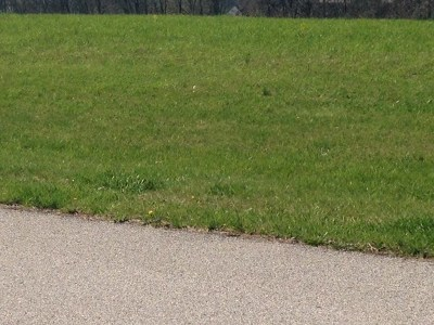 Grant County Residential Lots & Land For Sale: 145 Chippewa