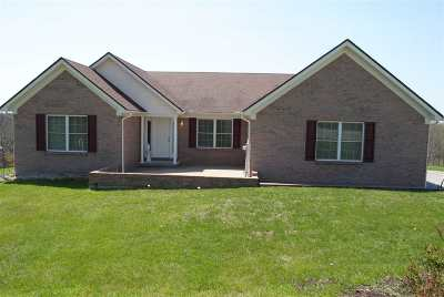 Boone County, Campbell County, Gallatin County, Grant County, Kenton County, Pendleton County Single Family Home For Sale: 1010 Lusby Mill Road