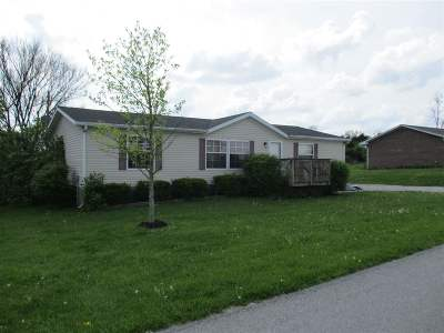 Pendleton County Single Family Home For Sale: 30 Mays