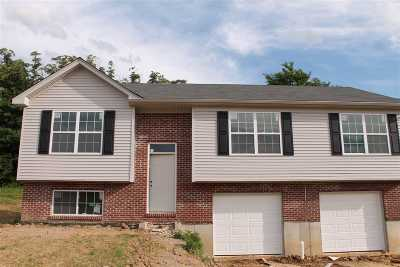 Dry Ridge Single Family Home For Sale: 5 Summerfield