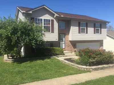 Crittenden Single Family Home For Sale: 206 Crittenden Court