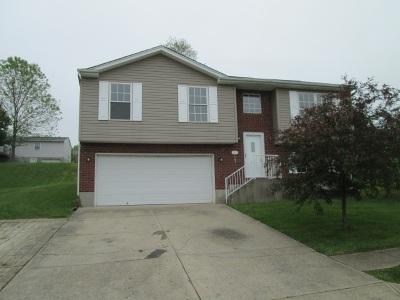 Crittenden Single Family Home For Sale: 211 Crittenden Court