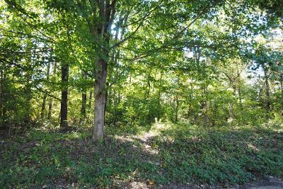 Boone County Residential Lots & Land For Sale: 139 Ridge