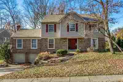 Single Family Home For Sale: 1125 Kurtzinger Ct