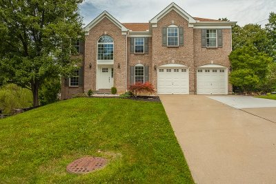 Boone County Single Family Home For Sale: 1798 Knollmont Drive