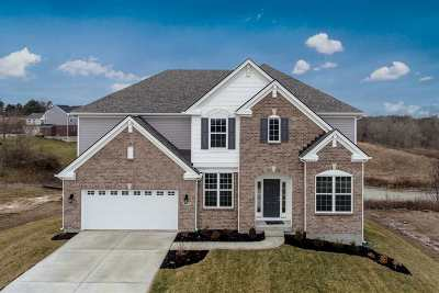 Covington Single Family Home For Sale: 10176 Hibernia Court