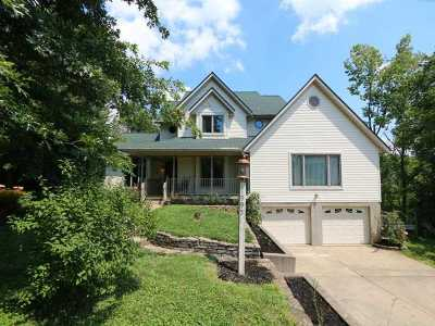 Single Family Home For Sale: 1995 Pieck Drive
