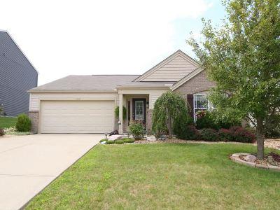 Alexandria Single Family Home For Sale: 1209 Summerlake Drive