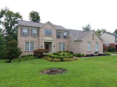 Boone County Single Family Home For Sale: 1317 Eagle View Drive