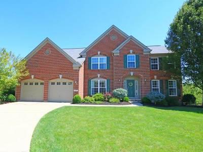Erlanger Single Family Home For Sale: 909 Doeridge Drive