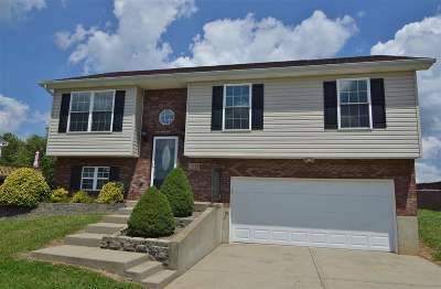 Crittenden Single Family Home For Sale: 605 Barley Circle