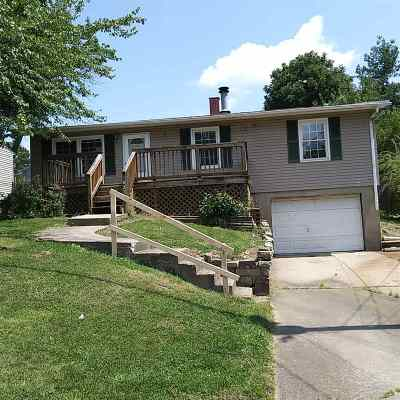 Elsmere Single Family Home For Sale: 1027 Lytle Avenue