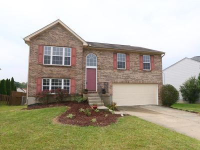 Boone County Single Family Home For Sale: 2487 Apollo Court