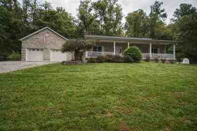 Boone County, Campbell County, Gallatin County, Grant County, Kenton County, Pendleton County Single Family Home For Sale: 9805 Brooklyn Woods Road