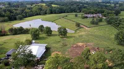 Boone County, Campbell County, Kenton County Single Family Home For Sale: 366 Walton Nicholson Road