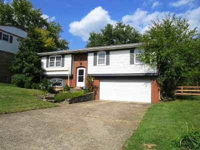 Erlanger Single Family Home For Sale: 3431 Misty Creek