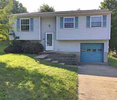 Kenton County Single Family Home For Sale: 32 Hideaway Drive