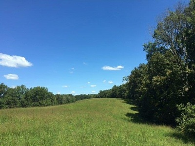 Residential Lots & Land For Sale: Lot #5 Leaning Oak Drive