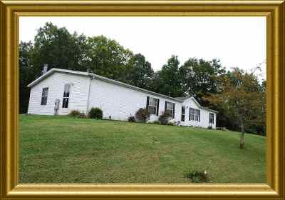 Owen County Single Family Home For Sale: 250 Laura